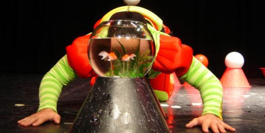 Deux petits poissons rouges dans un aquarium Cirkonflex